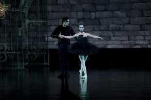 Black swan3