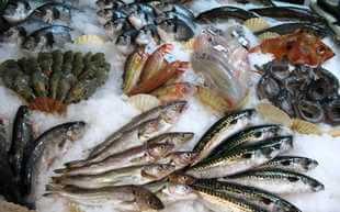 Etal poisson