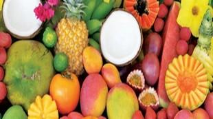 Fruits decembre