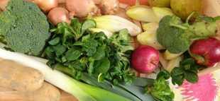 Legumes fevrier 1